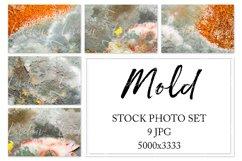 Mold. Stock photo set. Product Image 1