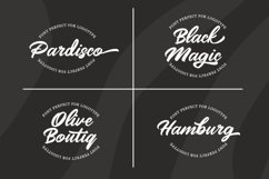 Mangotea - Script Font Product Image 5