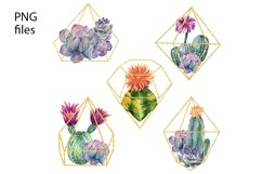 Watercolor Cactus and Flowers Clipart. Product Image 4