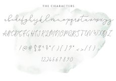 The Lighthouse - Delicate Script Font Product Image 5