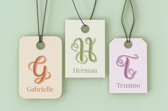 Swirly Letters - Handlettered Monogram Product Image 2