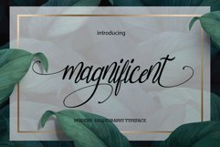 magnificent Product Image 1