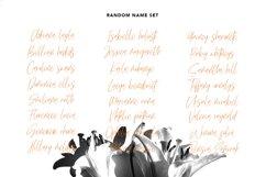 Mellodyst Signature Font Product Image 6