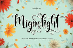 Mignolight Product Image 1