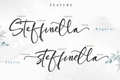 Steffinella Product Image 4