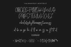 Salmander Bentols Script Signature Typeface Font Product Image 5