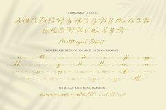 donitta   Stylish Calligraphy Product Image 9