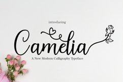 Camelia Product Image 1