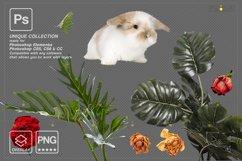 Photoshop overlay Easter bunny overlay Product Image 3