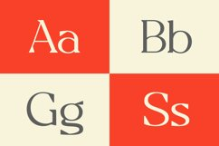 Allogist - Modern Classic Typeface Product Image 6