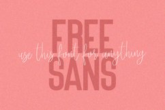 Kaydens Script Font Collection Product Image 5