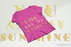 Sunflor-A New Crafter & Monogram Serif Font Product Image 8