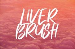 Hybrid Brush Font Product Image 5