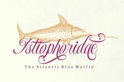 Monaveen Luxia - Luxury Calligraphy Font Product Image 2