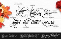 Web Font Enyssala Script Product Image 3