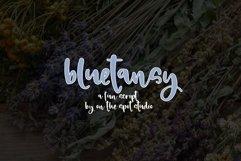 BlueTansy Product Image 1