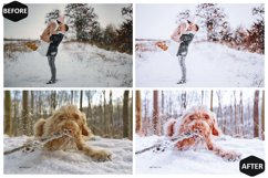 10 Snowy Dream Photoshop Actions And ACR Presets, Ps Winter Product Image 6