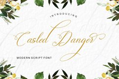 Casled Danger Product Image 1