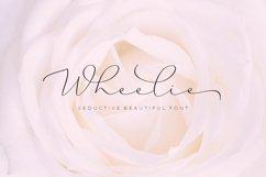 Wheelie Product Image 2