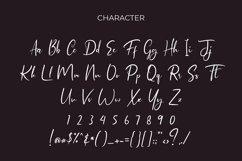 Himalaya Modern Script Font Product Image 6