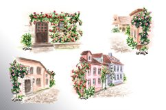 Fairy climbing roses Product Image 6