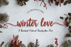 Winter Love | Handwritten Script Font Product Image 1