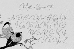 Mowllnew // Signature Font Product Image 5