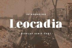 Web Font Leocadia Font Product Image 1