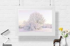 Snow Tree - Wall Art - Digital Print Product Image 1