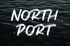 North Port   All Caps Brush Font Product Image 1