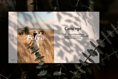 Felyn - Brand Guideline Keynote Presentation Template Product Image 5
