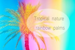 Palm tree in rainbow colors Product Image 1