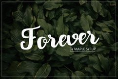 Forever script Product Image 1
