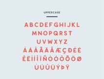 Enrique - 8 Fonts Fashionable Elegant Sans Serif Font Product Image 2