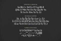 Web Font Brigham Font Product Image 2