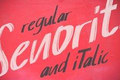 Senorita Brushes Font Product Image 2