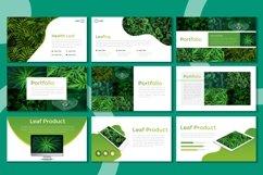 Presentation Templates - Foliage Product Image 3