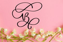 Swirly Letters - Monogram Font Product Image 4