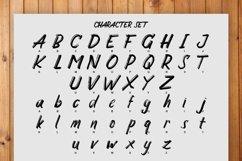 Carbonera Brush Fonts Product Image 4