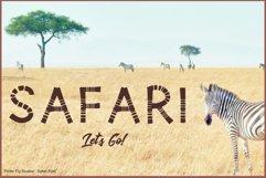 Safari Playful Display Font Typeface Product Image 5