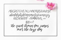Suzette Script Font Product Image 2