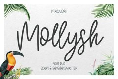 Mollysh Calligraphy Font Product Image 1