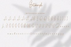 Ectomorph   Elegant Signature Font Product Image 3