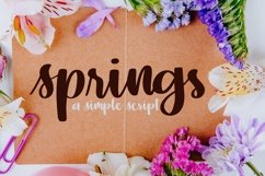Web Font springs - A Simple Hand Lettered Script Product Image 1