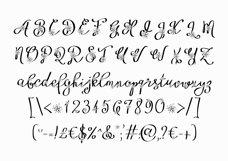 Floryfic font Product Image 3