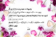 Azala   Style Script Font Product Image 6