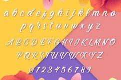 Web Font Llandudno Product Image 2