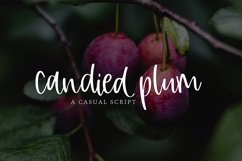 Candied Plum Product Image 1