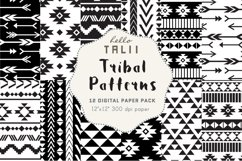 Black and White Tribal Patterns Product Image 1