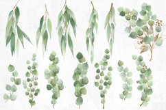 Watercolor and Gold Eucalyptus Clipart Product Image 4